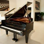 Bosendorfer 225-II photo