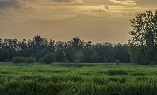 Salburua Wetlands Sunset